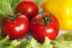 яркие свежие овощи стоковое фото