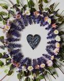 Яркие цветки весны на белой предпосылке Стоковые Фотографии RF