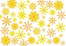 Яркие цветки стоковые фото