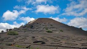 Яркие ые-зелен виноградники и bodegas на черных наклонах вулканических гор Холмы на предпосылке темносинего неба с белым clou Стоковое Фото