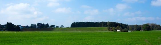 Яркие ые-зелен луга и голубое небо Стоковая Фотография