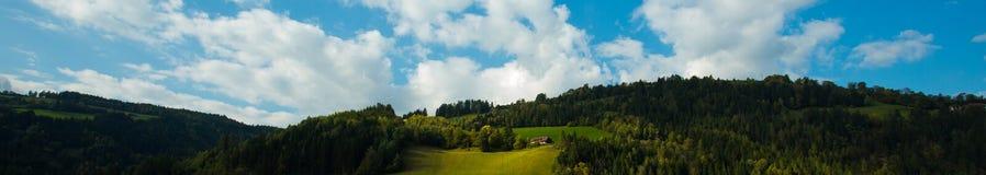 Яркие ые-зелен луга и голубое небо Стоковое Фото