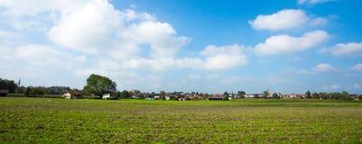 Яркие ые-зелен луга и голубое небо Стоковые Изображения