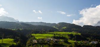 Яркие ые-зелен луга и голубое небо Стоковое фото RF