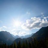 Яркие ые-зелен луга и голубое небо Стоковые Фото