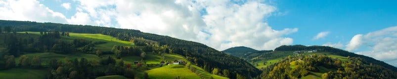 Яркие ые-зелен луга и голубое небо Стоковое Изображение RF