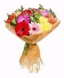 Яркий букет с gerberas и хризантема на белом backgr Стоковые Фотографии RF