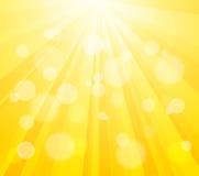 Яркий вектор Sun и краска брызгают влияние Стоковое Фото