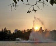 Яркий желтый свет солнца через брызг фонтана в вечере Стоковые Фотографии RF