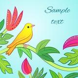 Яркий желтый цвет, оранжевая маленькая тропическая птица леса Стоковое фото RF