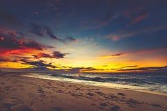 Яркий заход солнца над азиатским бечевником стоковые изображения rf