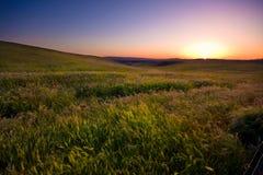 Яркий заход солнца Стоковые Изображения