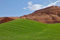 яркий зеленый цвет гольфа поля Стоковая Фотография RF