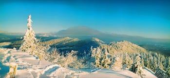 Яркий зимний день в горах стоковые изображения rf