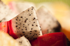 Яркий и живой комплект плодоовощ дракона Стоковые Изображения