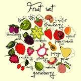 Яркий и красочный комплект плодоовощ Иллюстрация вектора