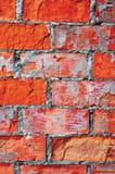 Яркий красный крупный план макроса текстуры кирпичной стены, старый детальный грубый треснутый grunge текстурировал предпосылку к Стоковое Изображение