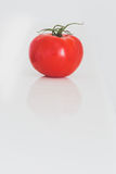 Яркий красный томат на белизне Стоковая Фотография RF