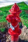 яркий красный цвет жидкостного огнетушителя Стоковая Фотография RF