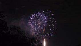 Яркий красочный дисплей фейерверка для торжества Стоковые Изображения RF
