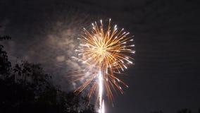 Яркий красочный дисплей фейерверка для торжества Стоковое Изображение