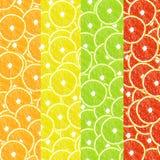 Яркий, красочный, комплект цитруса предпосылок Стоковые Фотографии RF