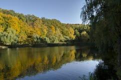Яркий ландшафт осени Стоковое Изображение RF