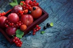 Яркий натюрморт с красными ягодами на зеленоголубой мраморной предпосылке, космосе экземпляра для вашего текста Стоковая Фотография RF