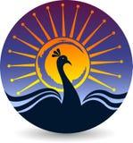 Яркий логотип павлина Стоковое фото RF