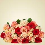 Яркий пестротканый букет роз Естественное backgroun цветков Стоковые Фотографии RF
