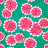 яркий пинк картины цветка безшовный Стоковая Фотография