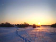 Яркий подняли солнце и красивые тени Стоковая Фотография