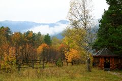 Яркий сад осени Стоковое фото RF
