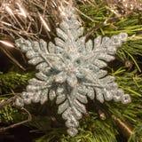Яркий серебр 6 украшений звезды пункта на рождественской елке Стоковое Фото