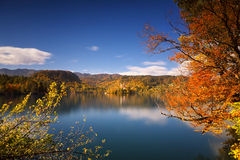 Яркий солнечный день осени на озере кровоточил, Словения Стоковое Фото