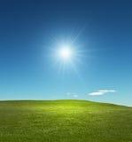 Солнечный лужок Стоковое фото RF