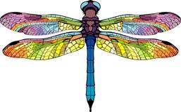 Яркий стилизованный dragonfly Стоковое фото RF