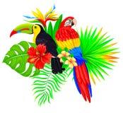 Яркий тропический состав с пальмой и flo попугая toucan Стоковые Фотографии RF