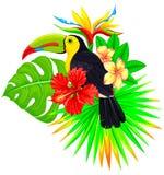Яркий тропический состав с toucan ладонью и цветками Стоковые Изображения