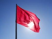 яркий флаг летая magenta небо Стоковые Фотографии RF