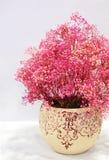 яркий цветок немногая стоковое изображение