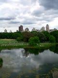 яркий центральный пасмурный парк дня Стоковое Изображение RF