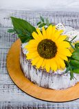 Яркий шоколадный торт лета солнцецвета Стоковые Изображения RF
