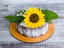 Яркий шоколадный торт лета солнцецвета Стоковая Фотография RF