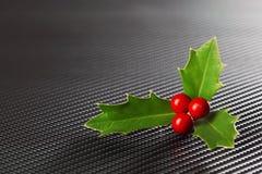 Яркий ый-зелен падуб рождества с красными ягодами Стоковые Фото