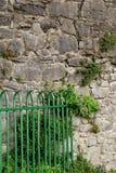 Яркий ый-зелен комплект строба металла против старой stonewall Стоковое Фото