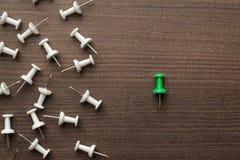 Яркий ый-зелен штырь нажима из толпы Стоковое Изображение RF