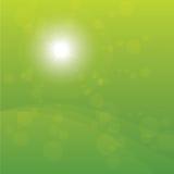 Яркий Sun разрывал зеленую предпосылку Стоковое Изображение RF