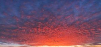 Яркий twilight заход солнца или восход солнца Яркое драматическое небо Beautifu Стоковое Изображение RF