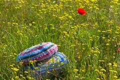 2 ярких вязать крючком крючком подушки в поле лета Стоковые Изображения
